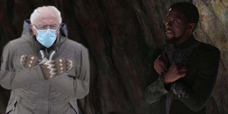 Bernie Sanders Tchalla.jpg