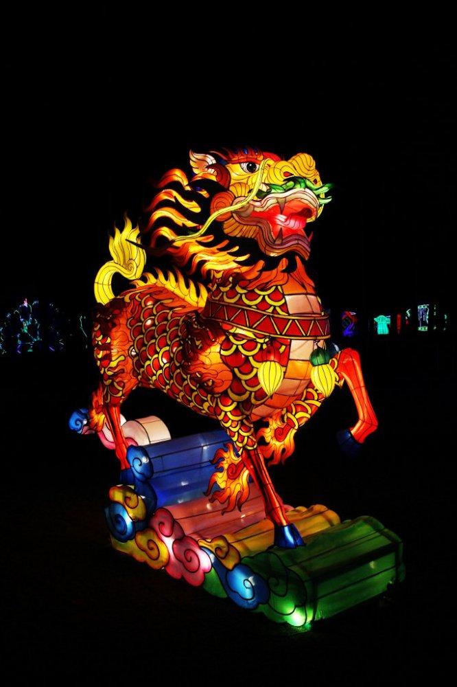 chinese lanterns 2017-11-26-02.jpg
