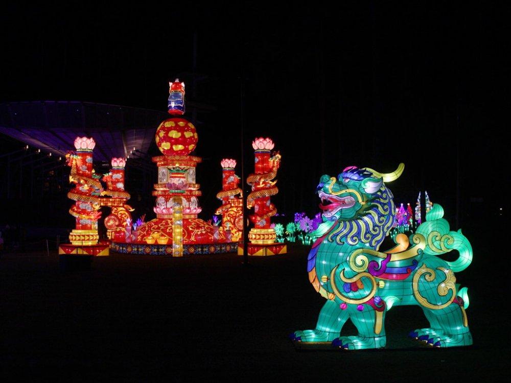 chinese lanterns 2017-11-26-05.jpg