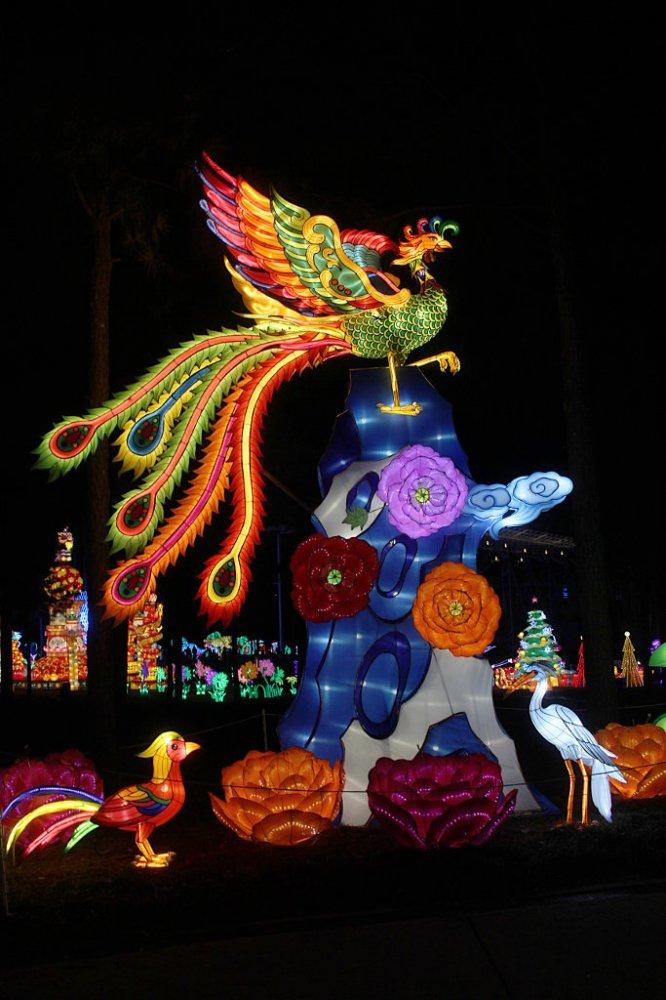 chinese lanterns 2017-11-26-06.jpg