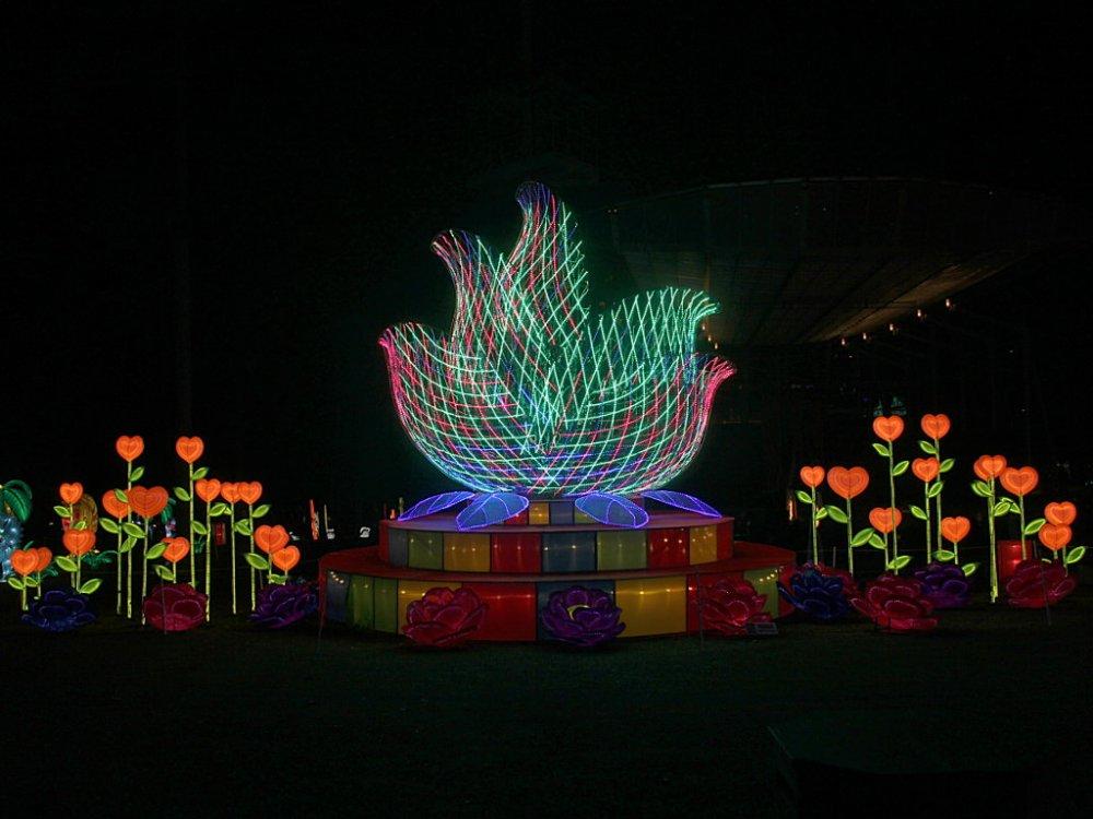 chinese lanterns 2017-11-26-07.jpg