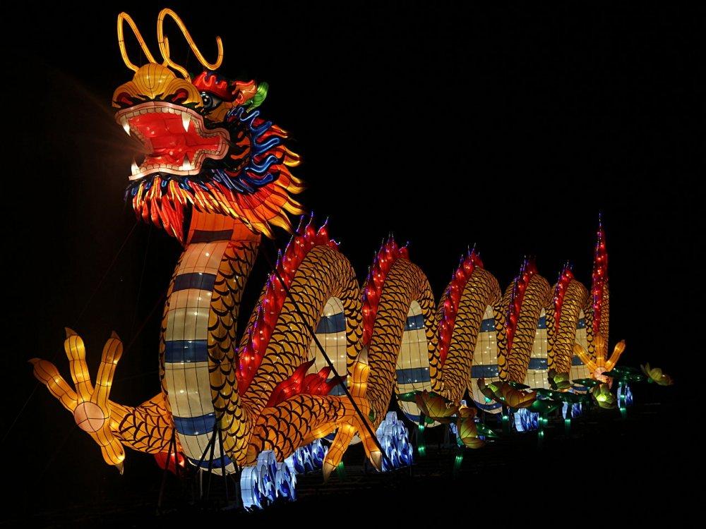 chinese lanterns 2017-11-26-09.jpg