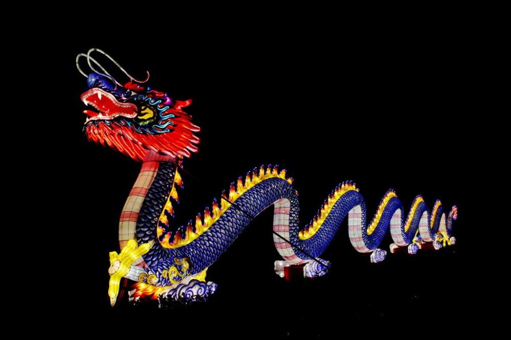 chinese lanterns 2018-11-29-02.jpg