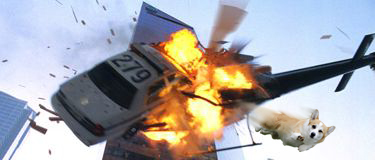 Cool Corgi Explosion.jpg