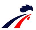 France_men's_national_ice_hockey_team_Logo.png