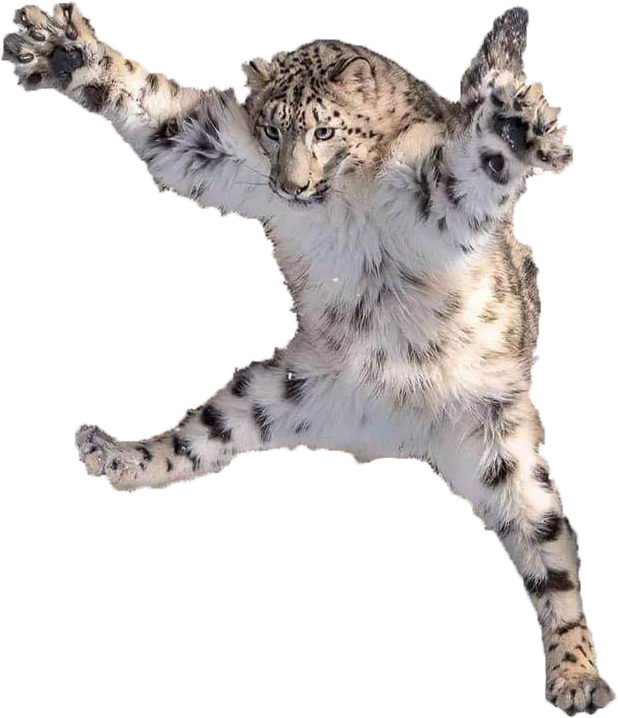 Leaping Leopard.png