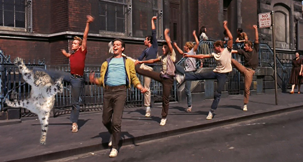 Leaping Leopard West Side Story.jpg