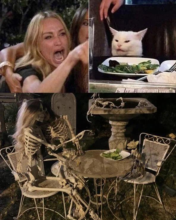 Skeleton Angry at Cat meme.jpeg