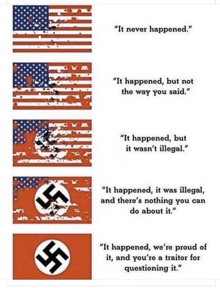 The descent into fascism.jpg