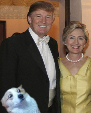 WTF Corgi Trump Hillary.jpg